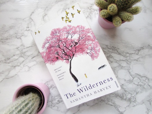 the wilderness samantha harvey book review